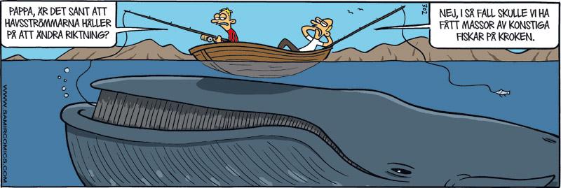 Satirteckning om havströmmarnas riktning, av Max Gustafson - serietecknare.