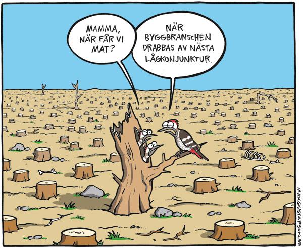 Satirteckning om skövlingen av svensk skog. Av Max Gustafson.